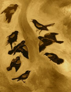 Catherine's Blackbirds